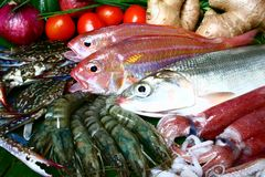 Seafoods. A bounty of assorted seafoods royalty free stock photo