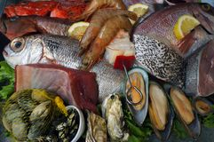 Seafoods. Fresh saltwater fish, mussels, crayfishes. Stock Photo