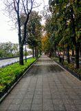 Avenue in Odessa Royalty Free Stock Photography