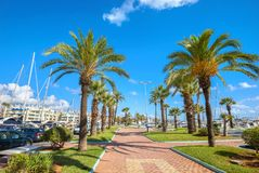 Benalmadena marina. Costa del Sol, Malaga province, Andalusia, S. Seafront with palm trees in Puerto Marina. Benalmadena, Malaga province, Costa del Sol stock image