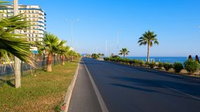 Seafront road with palms on sunny day royalty free stock image