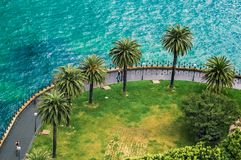 Seafront in Sydney, NSW, central coast view and palms, walking and running people at rainy day royalty free stock photography