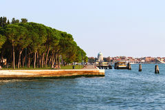 Seafront with trees and buildings on water. View over a nice seafront with a lot of trees and buildings at the back, in Venice, Italy Royalty Free Stock Image