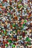 Seaglass strand - Bermuda Royaltyfria Foton