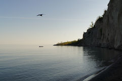 Seagle και βουνό Στοκ φωτογραφίες με δικαίωμα ελεύθερης χρήσης