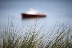 Seagrass Boat. Sailboat background behind Seagrass Florida Royalty Free Stock Photos