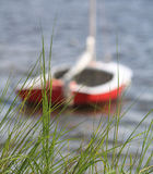 Seagrass Boat 2. Sailboat background behind Seagrass Florida Stock Image