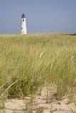 Seagrass en Groot Punt Lichte Nantucket stock afbeeldingen