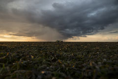 Seagrass landscape with raincloud Gili Air, Lombok, Indonesia Stock Image
