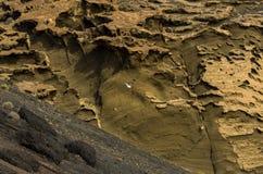 Seagull μπροστά από έναν παράξενο σχηματισμό πετρών από τη EL Golfo, Lanzarote στοκ εικόνα με δικαίωμα ελεύθερης χρήσης