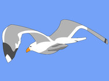 Seagull. Drawing of a seagull flying into a clear blue sky Royalty Free Stock Photos