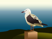 Seagull. Illustration of seagull staring out to sea Royalty Free Stock Photography