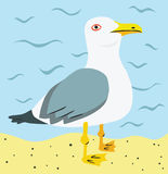 Seagull at the Beach. Funny Seagull Standing on the Beach royalty free illustration