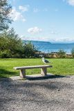 Seagull On Bench 2. A lone seagull site on a cement bench at Seahurst Beach Park in Burien, Washington royalty free stock photo