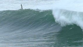 Seagull Bird Flying Over a Big Ocean Wave. A Seagull Swoops Low Over A Big Wave that is Breaking off of the Coast of Santa Cruz, California, USA.  Filmed in Slow stock footage