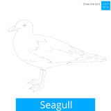 Seagull bird learn to draw vector Stock Photography