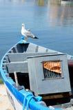 Seagull on boat Stock Photos