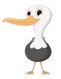Seagull cartoon. Illustration of Seagull cartoon isolated on white Stock Images