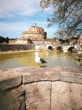 Seagull with Castel Sant Angelo in Rome in Italy. Tiber river stock images