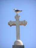 Seagull on cross Stock Photo