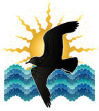 seagull denny słońce Obraz Royalty Free