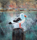 Seagull At The Dock. Acrylic painting of a seagull standing on a wooden dock post Stock Image