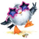 Seagull för havsfågel Marin- rolig bakgrund för flygillustration för näbb dekorativ bild dess paper stycksvalavattenfärg Arkivfoto