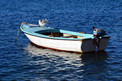 Seagull on a fishing boat in a bright summer day Royalty Free Stock Images