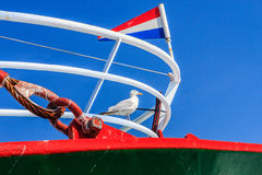 Seagull on a fishingboat. Stock Photo