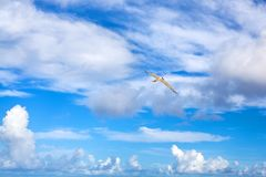 Seagull flies high in beautiful bright blue sky with white clouds background, close up stock photo