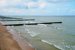 Deserted shore of the Baltic on a sunny day royalty free stock photography