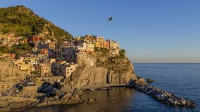 Seagull flies over the village of Manarola in the sunset light, Cinque Terre, Liguria, Italy. Europe royalty free stock photography