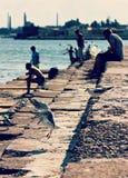 Seagull Flies on Pier Royalty Free Stock Photos
