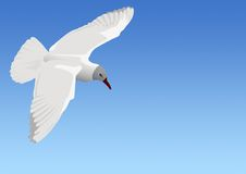 The seagull flying. In the sky above the sea Vector Illustration
