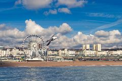 Seagull flying on Brighton beach royalty free stock image