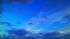 The blue sky. A seagull flying near the moon in a sunset and the clouds looking amazing with beautiful colours royalty free stock image