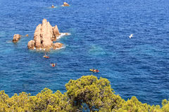Seagull flying over the sea. In Gerona Stock Image