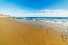 Seagull footprints in Malibu Stock Photography