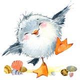Seagull för havsfågel Marin- rolig bakgrund för flygillustration för näbb dekorativ bild dess paper stycksvalavattenfärg Royaltyfri Foto