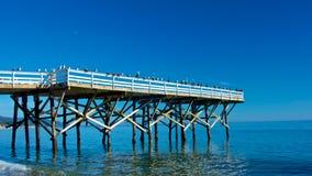 Seagull Gathering Pier Stock Image