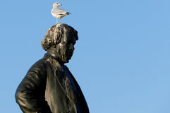 Seagull on head of Thomas D`Arcy McGee Statue Stock Photography