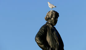 Seagull on head of Thomas D`Arcy McGee Statue Royalty Free Stock Photography