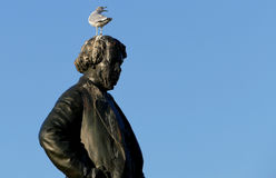 Seagull on head of Thomas D`Arcy McGee Statue Stock Photos