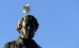 Seagull on head of Thomas D`Arcy McGee Statue Royalty Free Stock Image
