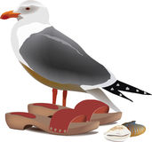 Seagull hooves and shells from the beach. Illustration beach holiday and vacation Royalty Free Stock Photo
