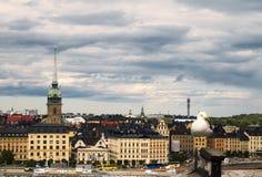 Seagull i Sztokholm obraz royalty free