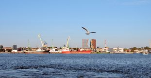 Seagull and Klaipeda port, Lithuania Stock Photo