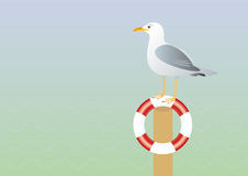 Seagull and lifebuoy vector illustration. Background with a seagull. A lone seagull watching the sea Stock Images