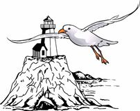 SEAGULL LIGHTHOUSE Royalty Free Stock Photography