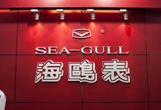 Seagull logo Obraz Stock